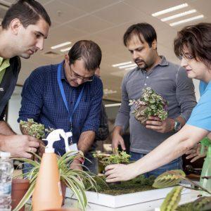 Creativity-on-focus-teambuilding-5