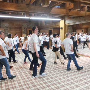 Roche-Dance-Teambuilding-2017-10